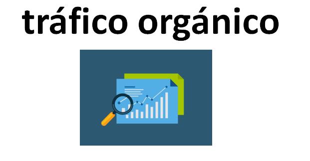Importancia de seguir  consejos de profesionales y agencias con experiencia en tráfico orgánico